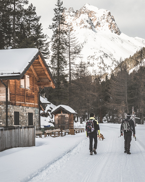 5 cose da fare d'inverno a Bardonecchia